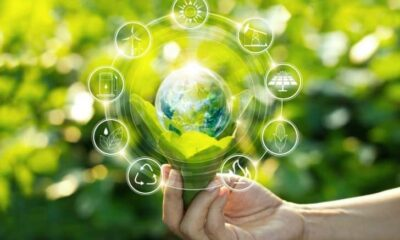 3 Ways to Go Green in the World of Business